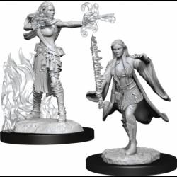Multiclass Warlock & Sorcerer Female