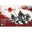 Ninja of Iga