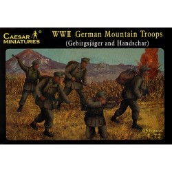 WWII German Mountain Troops