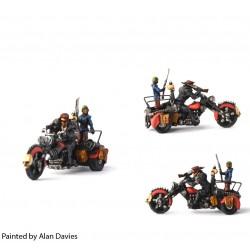 Skinners Trike: Flayer