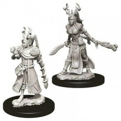 Female Human Druid
