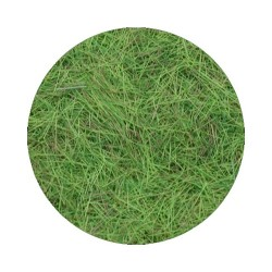 Powder Foliage rectangle 4mm